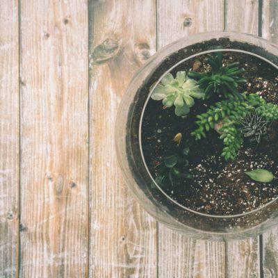 Earthing & Grounding